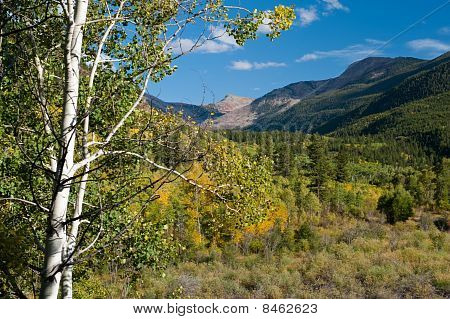 Independence Pass In Fall