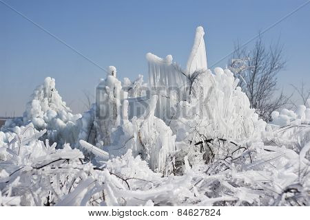 Natural Winter Background