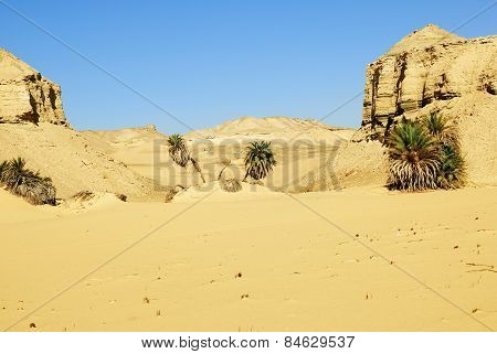 Sahara Deser