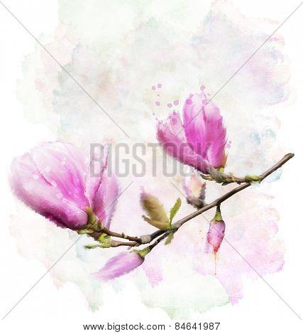 Digital Painting Of Magnolia Flowers