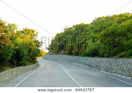 Empty Winding Road in Beautiful Green Summer Forest