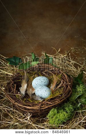 Blue speckled eggs lying in a bird's nest