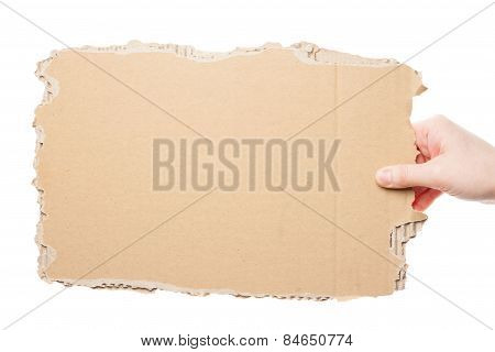 Hand Holding Cardboard