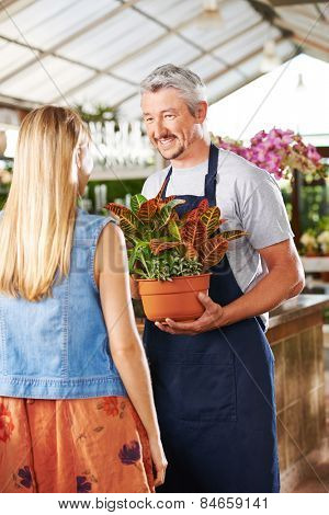 Florist with croton plant and woman in a nursery talking to each other