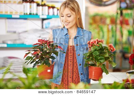 Smiling woman comparing poinsettia and begonia in a nursery