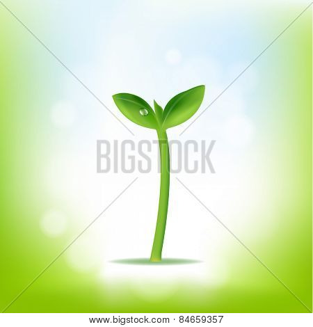 Nature Background With Plant With Gradient Mesh, Vector Illustration