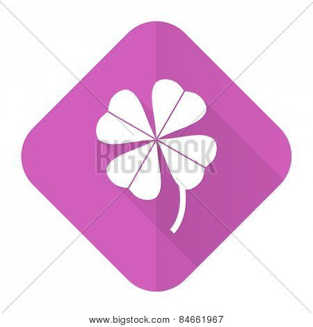 four-leaf clover pink flat icon
