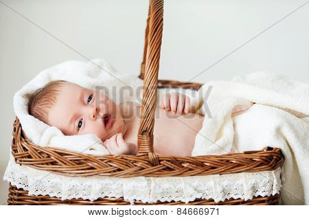 Baby In Wicker Basket.