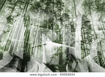 Abstract Surreal Forest Background. Green Toned Collage