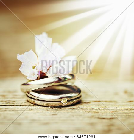 Wedding Rings Close Up In Rustic Style