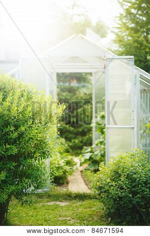 Natural Spring Background With Greenhouse