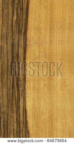 texture of limba tree