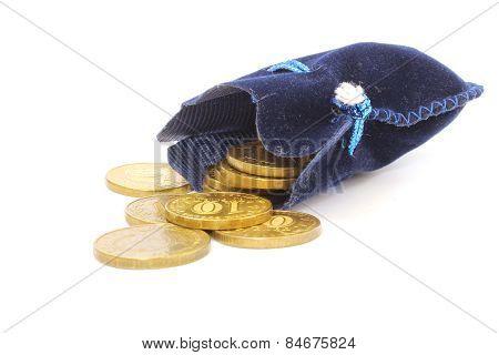 Rubles In Bag