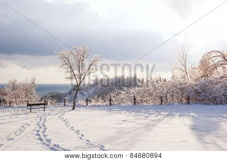 Beautiful winter landscape of park overlooking Scarborough Bluffs in Ontario, Canada