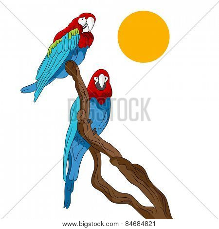 An image of two parrots sitting on a tree branch.