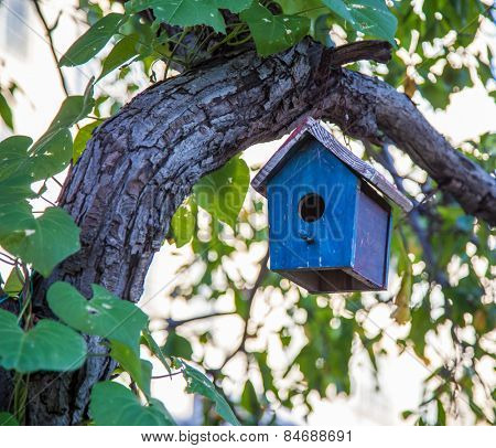 Bird house hanging in tree