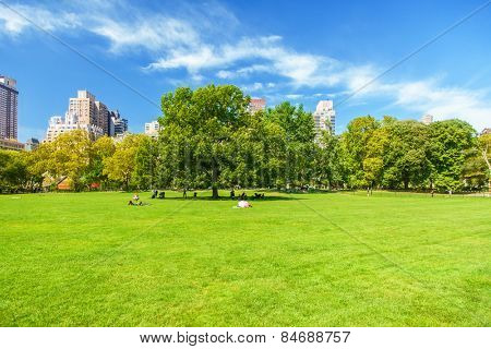 People taking a break in Central Park New York