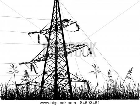 illustration with electric pylon in grass isolated on white background