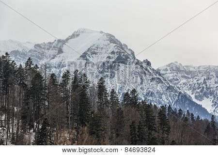 Bucegi Mountains Winter Landscape