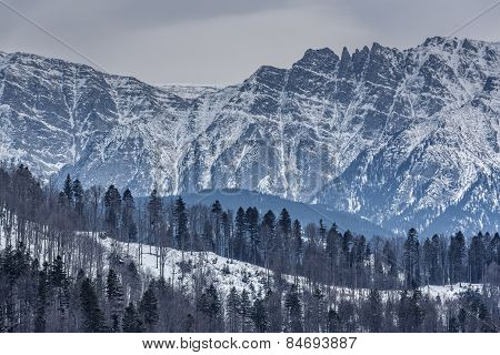 Bucegi Mountains Winter Scenery