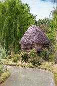 image of mud-hut  - a small hut with a thatched roof - JPG