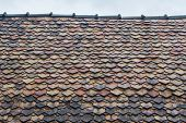 picture of lichenes  - Old roof tiles is lichen and roof in should be repair - JPG