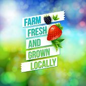 stock photo of farmer  - Farm Fresh And Grown Locally vector advertising poster design for a farmers market depicting fresh farm fruit over a blurred colorful abstract background with summer bokeh - JPG