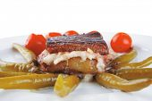 picture of cheese-steak  - roast beef steak and fused yellow cheese - JPG