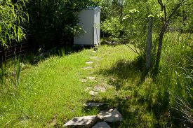 picture of outhouse  - The path to a small old outhouse - JPG