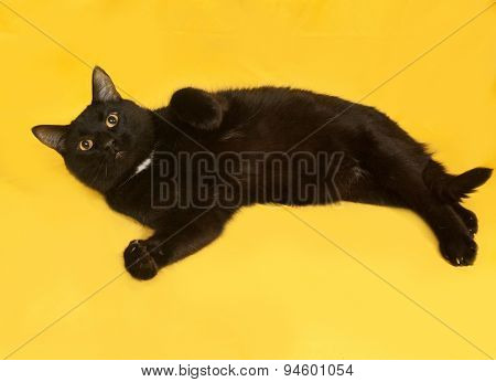 Black Cat Lying On Yellow