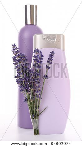 Plastic bottles of shampoo with fresh lavender isolated on white