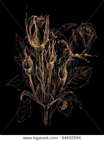 flower sketch on a black background