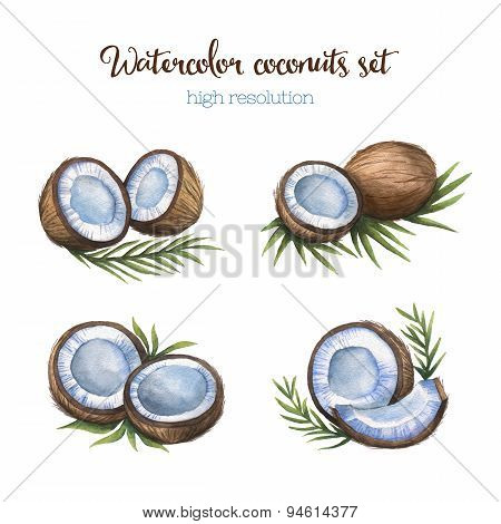 Watercolor coconuts set. Isolated on white background.