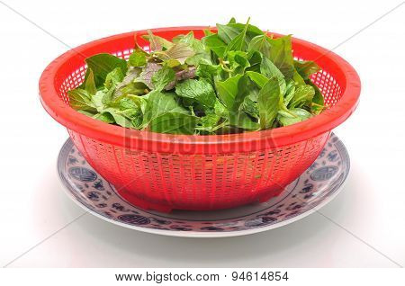 Dish of Vietnamese herbs on a white background