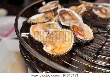 Shell steaks on the grill