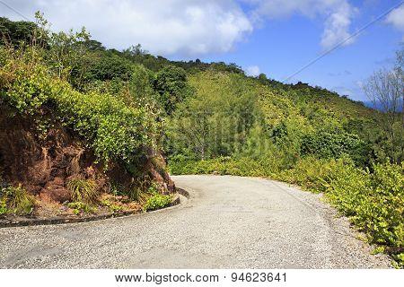 Scenic road on Mount Zimbvabve.