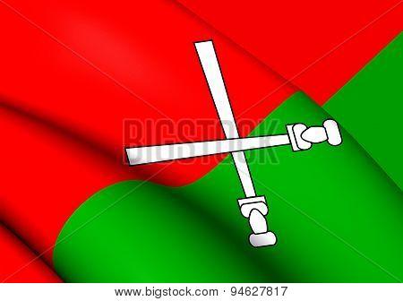 Flag Of Li And Miao