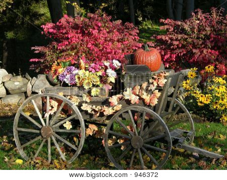 Garden Cart With Pumpkin