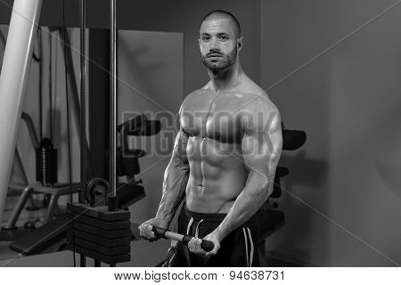 Male Bodybuilder Doing Heavy Weight Exercise For Biceps