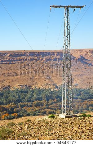 Utility Pole In Africa   Pylon