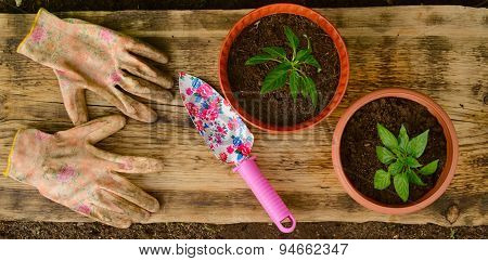 Two Flowerpots, Garden Shovel And Working Gloves