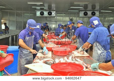 An Giang, Vietnam - December 26, 2012: Vietnamese Workers Are Filleting Pangasius Fish In A Seafood