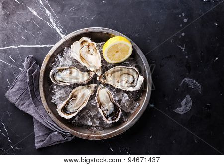 Opened Oysters On Metal Plate With Ice And Lemon On Dark Marble Background