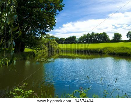 park scenery with pond