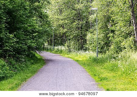 Gravel Road In Swedish Summer