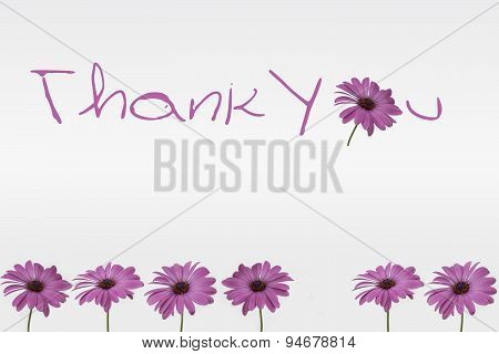 Thank you - flowers decoration on white background