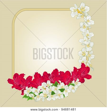 Frame Red Rhododendron And Jasmine Vector