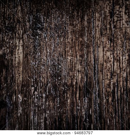 Vintage Texture Of Bark Wood Natural Background, Dark Brown Color