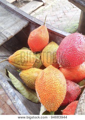 Baby Jackfruit Or Sweet Gourd