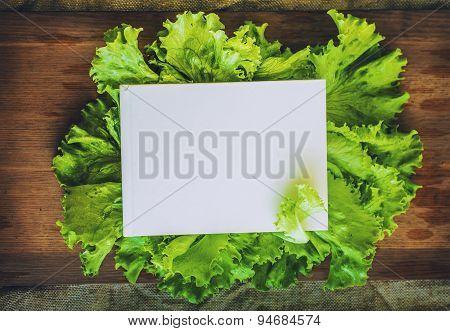 Frame Leaf Of Lettuce Around The Book